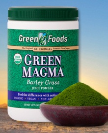 green magma vegetarian juice